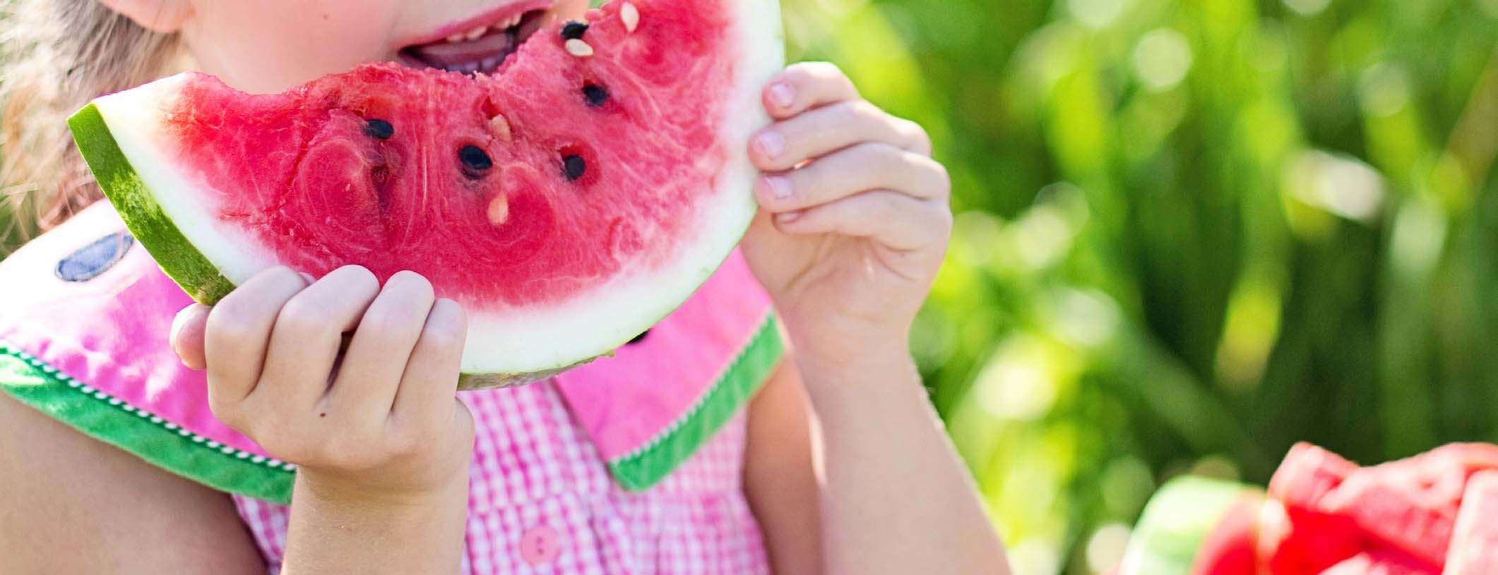 Summer safety tips blog   watermelon 01
